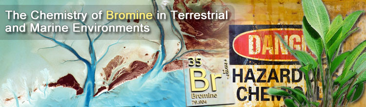 The Chemistry of Bromine in Terrestial and Marine Environments