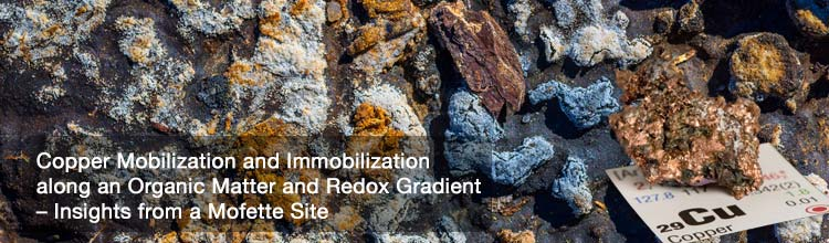 Copper Mobilization and Immobilization along an Organic Matter and Redox Gradient – Insights from a Mofette Site