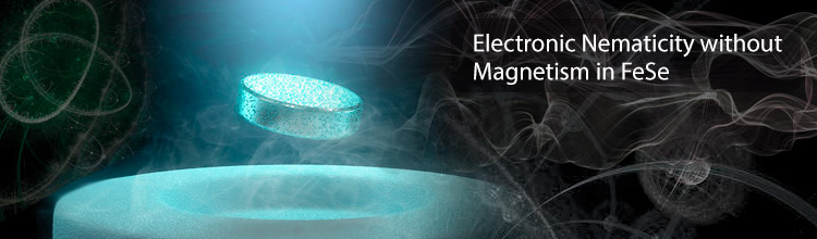 Electronic Nematicity without Magnetism in FeSe