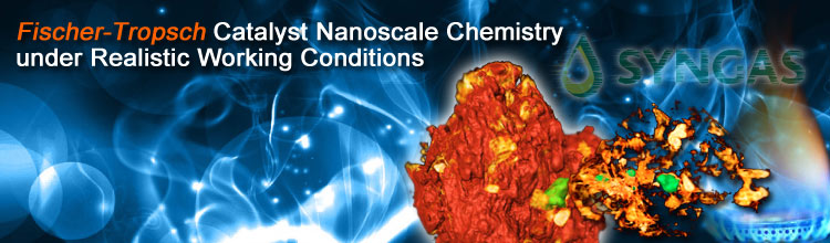 Fischer-Tropsch Catalyst Nanoscale Chemistry under Realistic Working Conditions