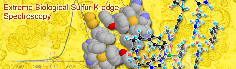 Extreme Biological Sulfur K-edge Spectroscopy