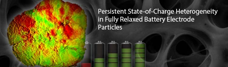 Persistent State-of-Charge Heterogeneity in Fully Relaxed Battery Electrode Particles