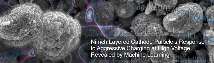 Ni-rich Layered Cathode