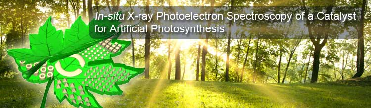 In-situ X-ray Photoelectron Spectroscopy of a Catalyst for Artificial Photosynthesis