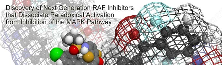 Discovery of Next Generation RAF Inhibitors that Dissociate Paradoxical Activation from Inhibition of the MAPK Pathway