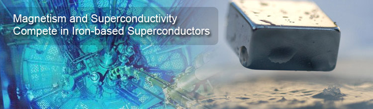 Magnetism and Superconductivity Compete in Iron-based Superconductors