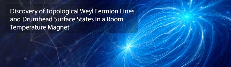 Discovery of Topological Weyl Fermion Lines and Drumhead Surface States in a Room Temperature Magnet