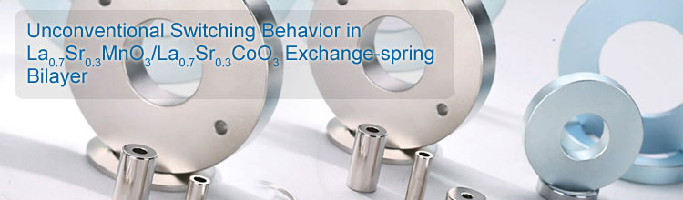 Unconventional Switching Behavior in Exchange-spring Bilayer