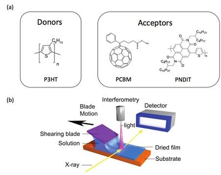 Morphology Development Of Polymer Fullerene And Polymer