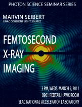 Femtosecond X-ray Imaging