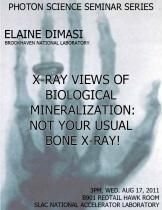 X-ray Views of Biological Mineralization: not your usual bone x-ray!