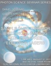 Sample Injectors for Biological Imaging with X-ray Free Electron Lasers