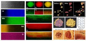 Atomic-Resolution Spectroscopic Imaging and In Situ Environmental Study of Bimetallic Nanocatalysts by Fast Electrons