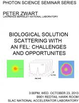Biological Solution Scattering with an FEL: challenges and opportunities