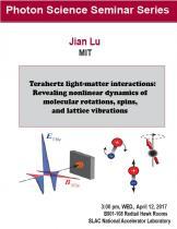 Terahertz light-matter interactions: Revealing nonlinear dynamics of molecular rotations, spins, and lattice vibrations
