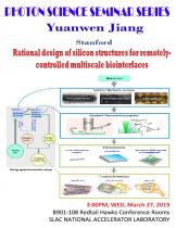 Rational design of silicon structures for remotely-controlled multiscale biointerfaces