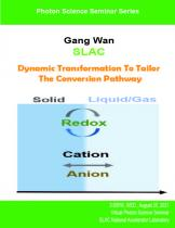 Dynamic Transformation To Tailor The Conversion Pathway