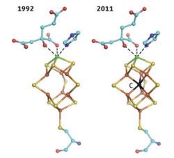 (Nitrogenase Progress)
