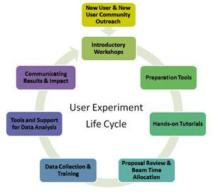 (URA cycle)