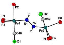 (Iron Diazene Complex)