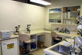 BCM1 Prep Lab Corner
